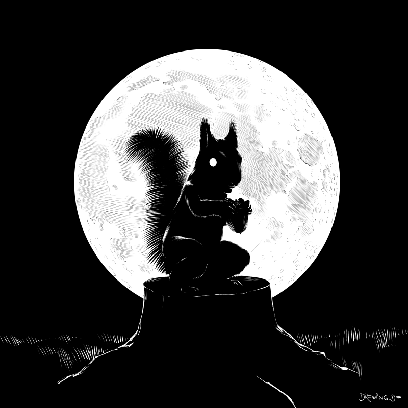 Wehrhörnchen, drawing by Ingmar Drewing
